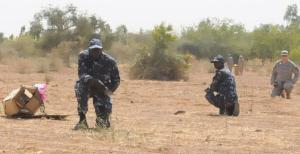 MOPTI, MALI -- A Malian airmen set up a cordon around a helicopter box as part of the air drop recovery training with the 2/19th Special Forces as part of operation Atlas Accord 2012, near Mopti, Mali on Feb. 13, 2012. This is one of a lengthy series of US training programs for Mali's military. (U.S. Army photo by Sgt. Mark Henderson)